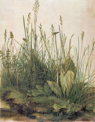 Albrecht Dürer Varen op achtergrond