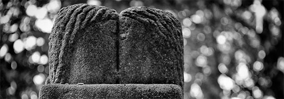 Brancusi, de Kus